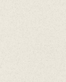 #6698 - Paloma Polar