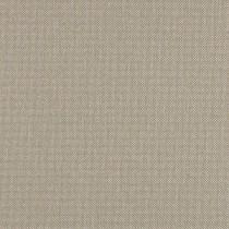 #5306 - Plex Argent